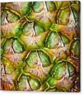 Pineapple Skin Canvas Print