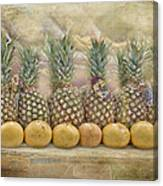 Pineapples And Grapefruit Canvas Print