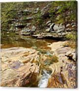 Piney Creek In Southern Illinois Canvas Print