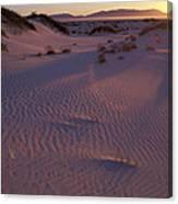 Ping Sand Canvas Print