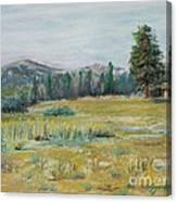 Pingree Park Canvas Print