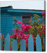 Pink And Blue House Canvas Print