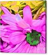 Pink And Green Flowers Canvas Print