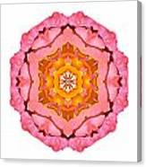 Pink And Orange Rose I Flower Mandala White Canvas Print