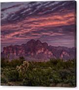 Pink And Purple Desert Skies  Canvas Print