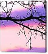 Pink And Purple Sunset Canvas Print