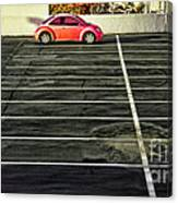 Pink Beetle Canvas Print