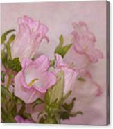 Pink Bell Flowers Canvas Print