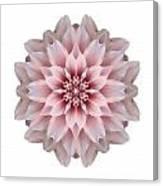 Pink Dahlia I Flower Mandala White Canvas Print