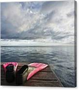 Pink Fins On Dock Canvas Print