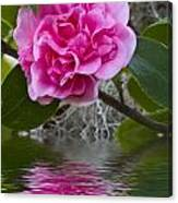 Pink Flower Reflection Canvas Print