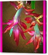 Pink Ladies Dancing Get Well Soon Canvas Print