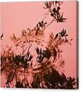 Pink Level Canvas Print