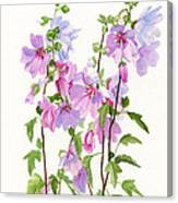 Pink Mallow Flowers Canvas Print