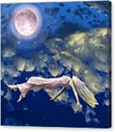Pink Moon Canvas Print