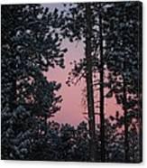 Pink Mountain Morning Canvas Print