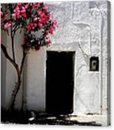 Pink Oleander By The Door Canvas Print