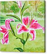 Pink Oriental Lillies Canvas Print