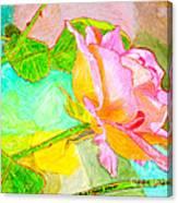 Pink Peach Power Canvas Print