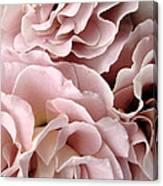 Pink Petal Profusion Canvas Print