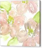 Pink Quince Canvas Print