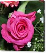 Pink Rose Adds Colour Canvas Print