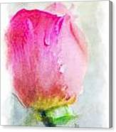 Pink Rose Bud - Digital Paint II Canvas Print