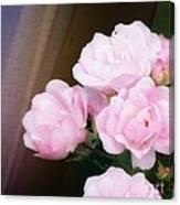 Pink Rose Cluster Canvas Print