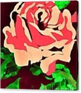 Pink Rose Impression Canvas Print