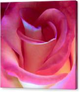Pink Rose Pedals Canvas Print