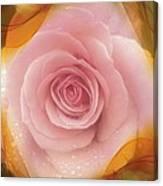 Pink Rose Romance  Canvas Print