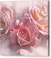 Pink Roses In The Mist Canvas Print