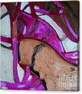 Pink Sandles Canvas Print