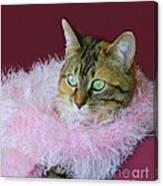 Pink Scarf Canvas Print