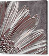 Pink Silver Canvas Print