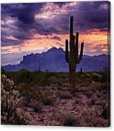 Pink Skies At The Superstitions Canvas Print