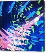 Pink Tea Leaf Erickson Canvas Print