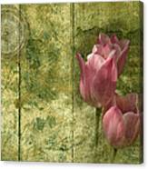 Pink Tulips And Old Clock Canvas Print