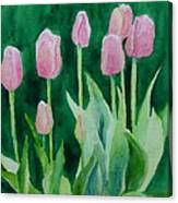 Pink Tulips Colorful Flowers Garden Art Original Watercolor Painting Artist K. Joann Russell Canvas Print