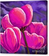 Pink Tulips On Purple Canvas Print