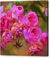 Pink Winter Roses Three Canvas Print