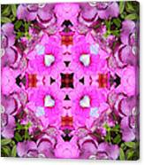 Pinks- Oh My Canvas Print