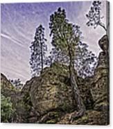 Pinnacles And Trees Canvas Print