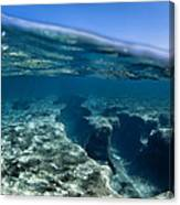 Pipe Reef. Canvas Print