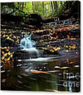 Pipestem Falls Canvas Print