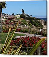 Pismo Beach Landscape Canvas Print