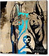 Pitbull Canvas Print