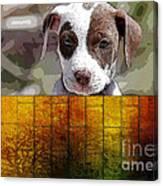 Pitbull Puppy Canvas Print