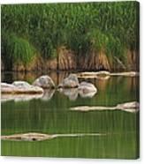 Llano River 2am-106459 Canvas Print