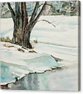 Placid Winter Morning Canvas Print